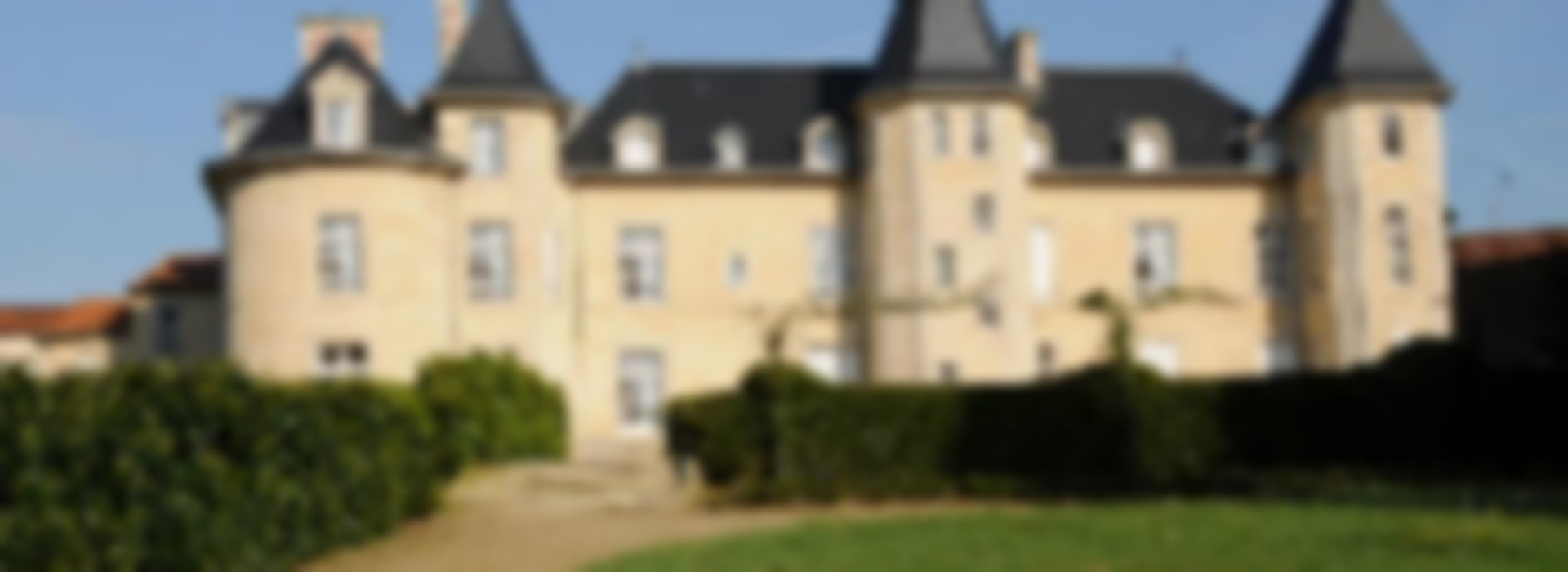 chambre d 39 hotes chateau de la bergeliere perse bed and breakfast frankrijk pays de la loire. Black Bedroom Furniture Sets. Home Design Ideas